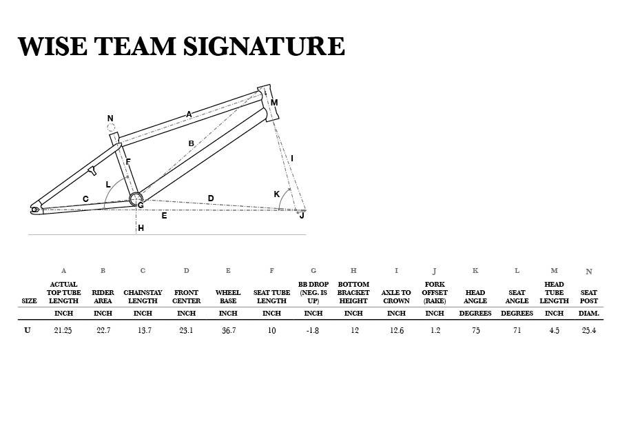 Wise Team Signature Geometry